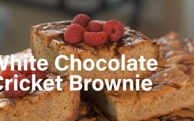 Paradox White Chocolate Brownies
